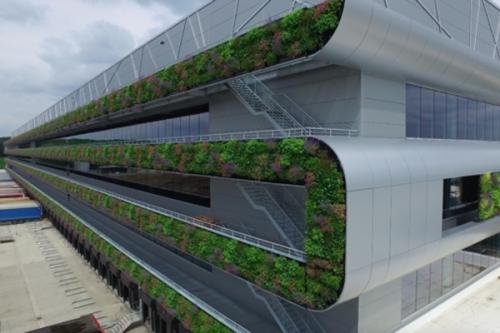 Maior parede verde da Europa, Bélgica - Live Panel