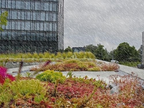 """""""Stormwater Management Roof"""" - Sistema de Gestão de Águas Pluviais"""