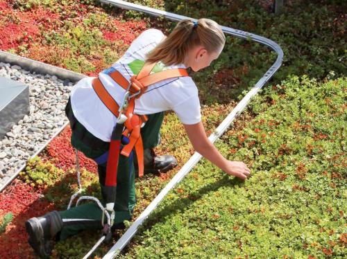 Sistemas de segurança para coberturas verdes