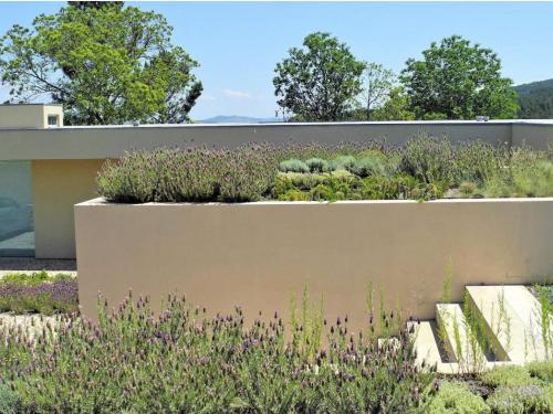 Sistema Plantas Aromáticas