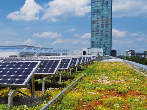 Bio Solar Roof - Coberturas verdes e energia solar